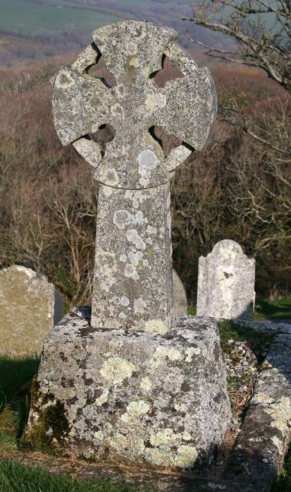 Granite Celtic cross with leafy and crustose lichens